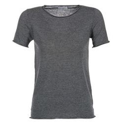 Vêtements Femme T-shirts manches courtes Casual Attitude GENIUS Marine
