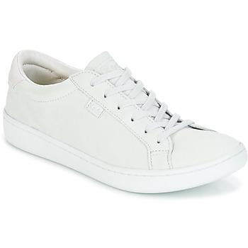 Scarpe Donna Sneakers basse Keds ACE MONO Ghiaccio / Grigio