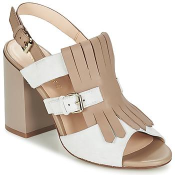 Chaussures Femme Sandales et Nu-pieds Café Noir GONFERT Gris / Beige