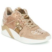 Chaussures Femme Baskets montantes Serafini CHICAGO Beige / Doré
