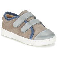 Schuhe Jungen Sneaker Low Citrouille et Compagnie GOUTOU Grau / Maulwurf / Blau