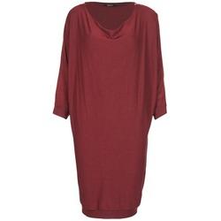 Abbigliamento Donna Abiti corti Kookaï BLANDI Bordeaux