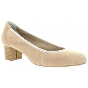 Chaussures Femme Escarpins Brenda Zaro Escarpins cuir velours Poudré