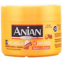 Beauté Soins & Après-shampooing Anian Keratina Liquida Mascarilla Repara & Protege  250 ml