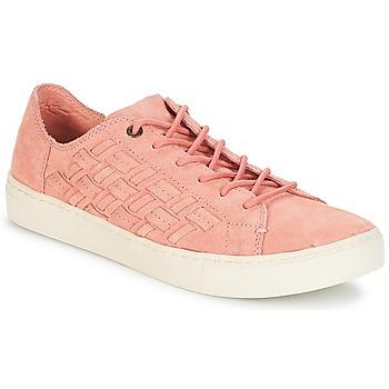 Schuhe Damen Sneaker Low Toms LENOX White/forest