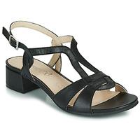 Chaussures Femme Sandales et Nu-pieds Caprice SATIBO Noir