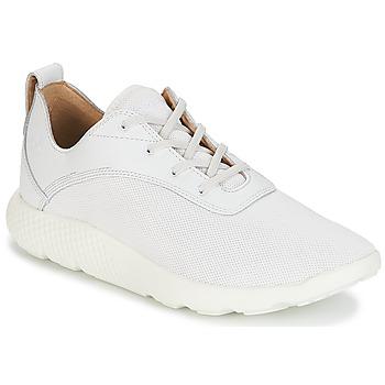 Schuhe Herren Sneaker Low Timberland FLYROAM Weiß