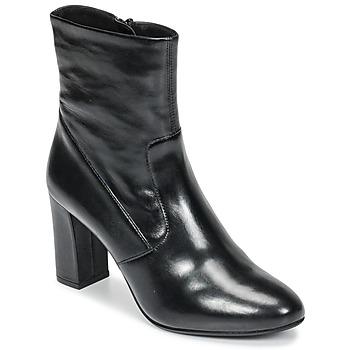 Chaussures Femme Bottines Steve Madden AVENUE Noir