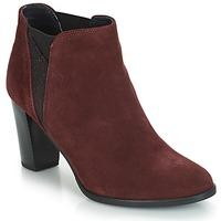 Schuhe Damen Low Boots André ROSACE Bordeaux