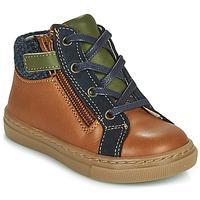 Chaussures Garçon Boots André CORBEAU Marron