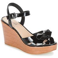 Chaussures Femme Sandales et Nu-pieds André DOME Noir