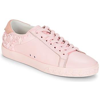 Chaussures Femme Baskets basses Ash DAZED Rose