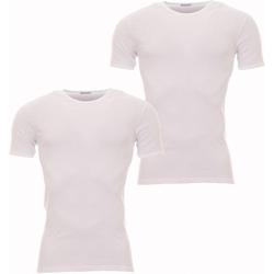 Vêtements Homme T-shirts manches courtes Eminence Lot de 2 Tee-shirts col rond  en pur coton Blanc blanc