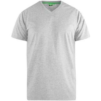 Vêtements Homme T-shirts manches courtes Duke D555 Gris
